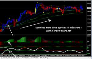 X bars forex system