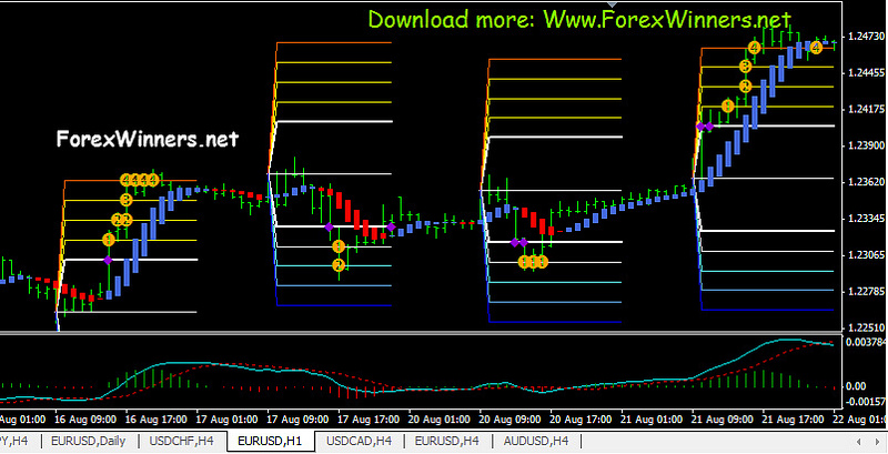 50 pips a day forex strategy by laurentiu damir download
