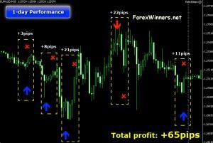 Forex 50 pips trading system by rita lasker