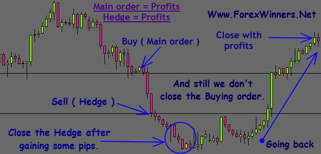 Hedging-chart-all-profits , forex winners
