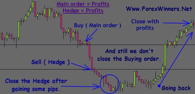 Хеджинг форекс сравнение форекс и фондового рынка