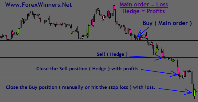 Hedging-chart-loss-and-profits