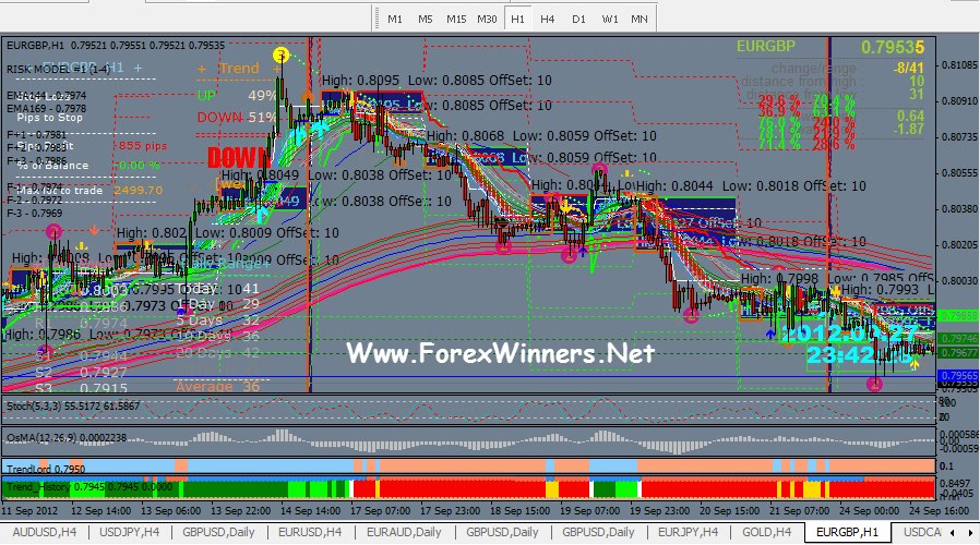 forex fun , funny forex , forex funny pictures