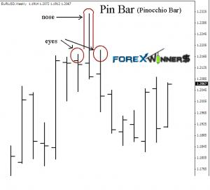 Pin bars introduction