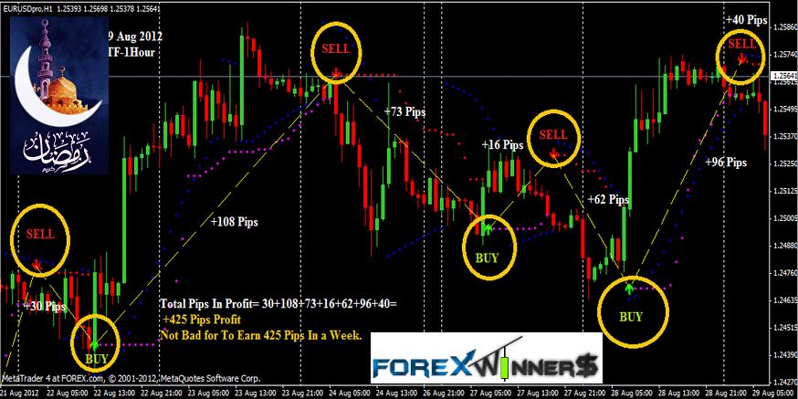 Forex pips striker review