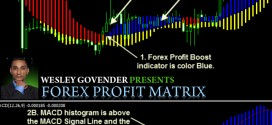 Forex Profit Matrix