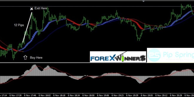 pipspring-trading-system | Forex Forum @ World Wide Invest
