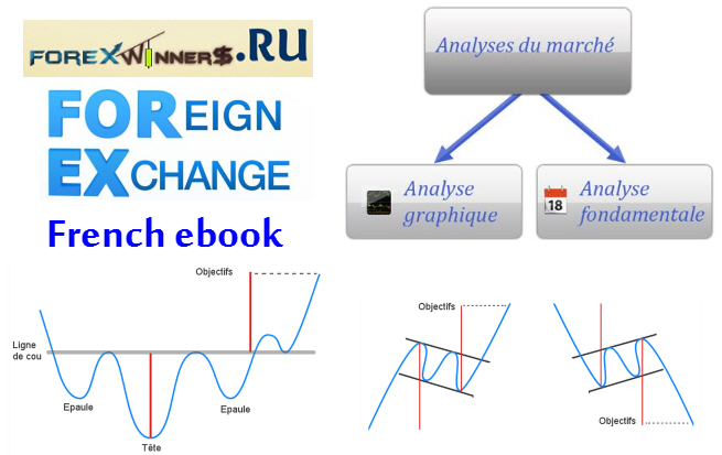 Forex french book , Forexagone , Guide complet du Forex , forex learn , France forex , forexwinners.ru