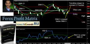 forexprofitmatrix Forex Master Level