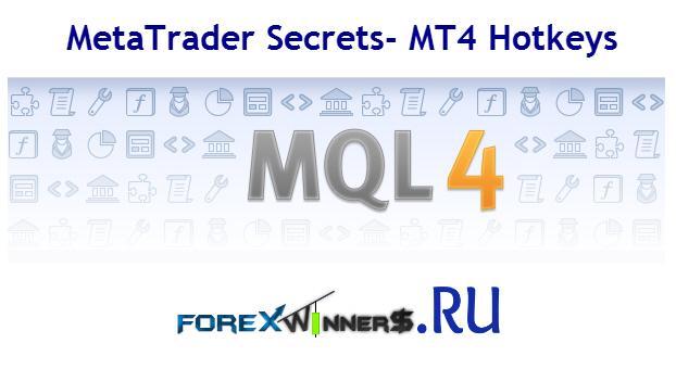 Hotkeys meta trader