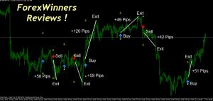 Forex Reviews-Forex Trend Navigator