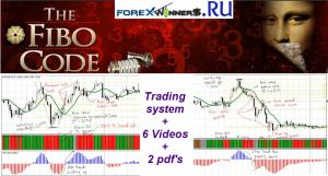 The Fibo Code trading system