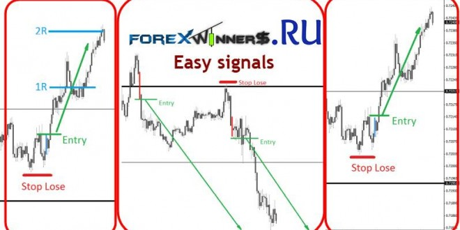 Easy forex terms and conditions