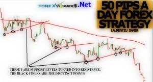 50 Pips A Day Forex Strategy by Damir Laurentiu