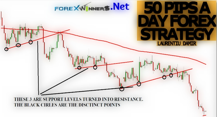 Forex day 2017
