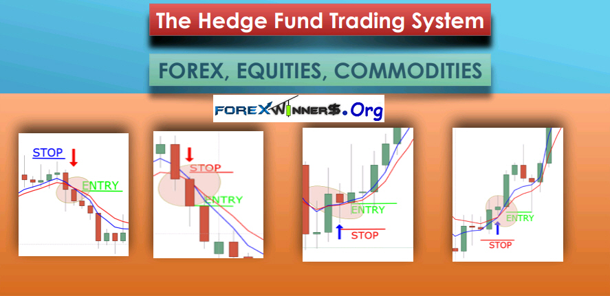 Forex trading investment fund