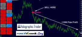 FX Eagle Dashboard Forex System- Trading Signals For Every Day Profits